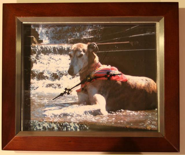 Your Dog's Picture Here - $50.00