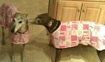 Malfi and Gigi Breast Cancer Awareness Housecoat